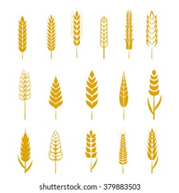 Set of simple wheats ears icons and wheat design elements for beer, organic wheats local farm fresh food, bakery themed wheat design, grain, beer elements, wheat simple. Vector illustration eps10