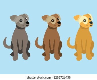 Set of sitting puppy images in three colors. Vector drawing of pet dog. Simplified representation of animal.