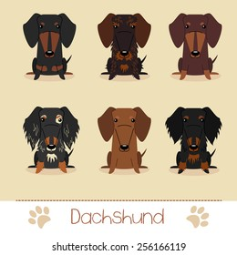 Set of six different colors Dachshund