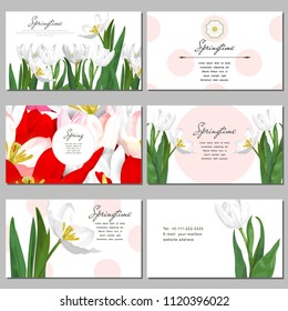 Set of six horizontal business cards. A bouquet of white tulips. Place for your text.