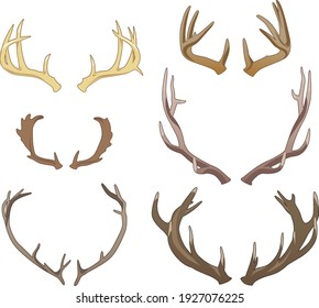 Set of six pairs of colored vector antlers