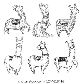 Set of six pretty hand drawn lamas, vector illustration