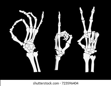 set of skeleton hands, vector illustration clip-art