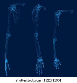 Set with the skeleton of a human hand made of blue lines on a dark background. Front, side and isometric view. 3D. Vector illustration.