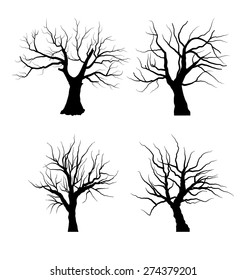 Set Sketch of Dead Tree without Leaves , isolated on white background - vector