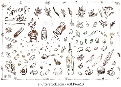 set sketch illustrations and icons for design in cooking, recipe books, menu, packaging, coloring. Isolated vector parts can be painted. art. vintage. vegetables, spices, pepper, salt, oil