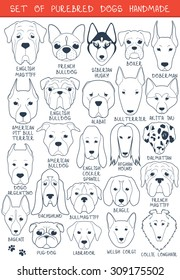 Set sketches of 24 dogs different breeds handmade. Icons with pets animals. Alabai Mastiff. Bulldog and pug. Pitbull isolated
