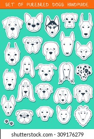 Set sketches of 24 dogs different breeds handmade. Icons with pets animals. Alabai Mastiff. Bulldog and pug. Pitbull