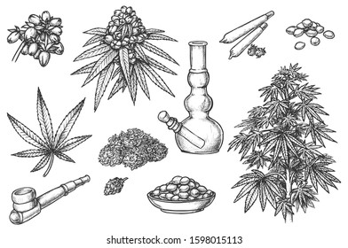 Set of sketches for marijuana items, hemp leaves and engraved seeds, cannabis bud. Smoking Pipe and bong, joint and jar, cigarette and tobacco. Sativa, indica marijuanna, medicine weed, legalize pot