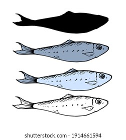 A set of small fish. sprat in different variation of the sketch, the color and silhouette . isolated fish sardine elements black lines in blue and gray painted by hand for your design on a white backg