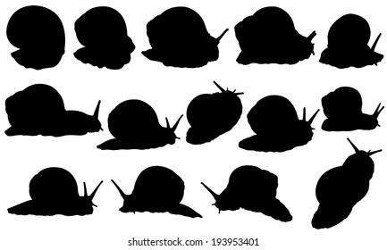 set of snail silhouettes isolated