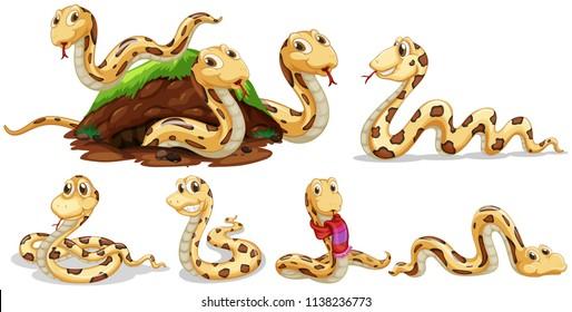 A Set of Snake on White Background illustration