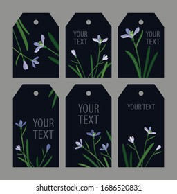 set snowdrops on a green background: three long hexagonal tags and three short  hexagonal tags