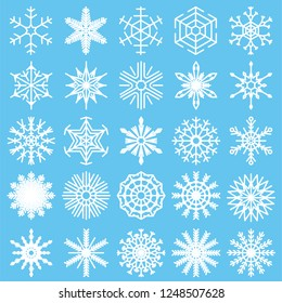 Set with snowflakes on a white background, winter design, vector