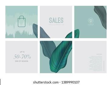 Set of social media instagram template for spring summer sale, clean element style with leaf. Packaging for botanic, hotle, spa, resort, luxury. Vector illustration.