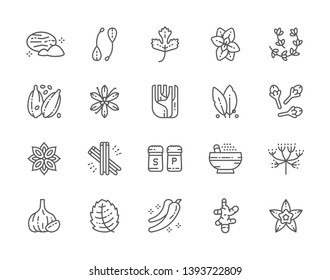 Set of Spice Line Icons. Nutmeg, Capers, Parsley, Oregano, Thyme, Cardamom, Vanilla, Fennel, Cloves, Cinnamon, Caraway, Garlic, Ginger and more. Pack of 48x48 Pixel Icons