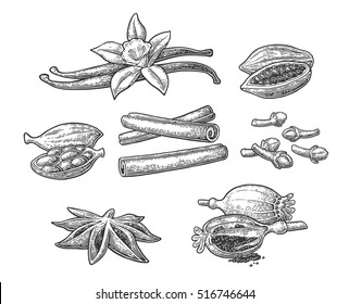 Set of spices. Anise star, cardamom, clove, cinnamon, fruits of cocoa beans, vanilla stick and flower, poppy heads. Isolated on white background. Vector black vintage engraving illustration.