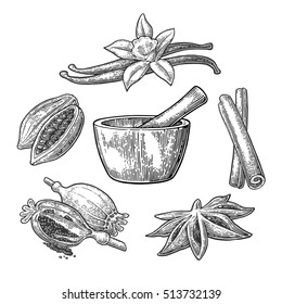 Set of Spices, Mortar and Pestle. Anise star, cinnamon, fruits of cocoa beans, vanilla stick and flower, poppy heads and seeds. Isolated on white background. Vector black vintage engraving