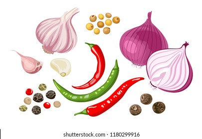 Set of spicy spices and vegetables. Garlic, red onion, chili, dried peppercorns, allspice, pimento, mustard grains isolated on white background. Vector illustration in flat style.