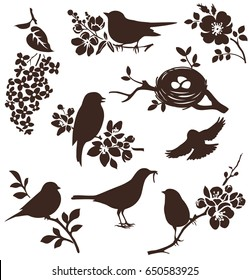 Set of spring bids and floral twigs. Vector silhouettes of birds and flowers