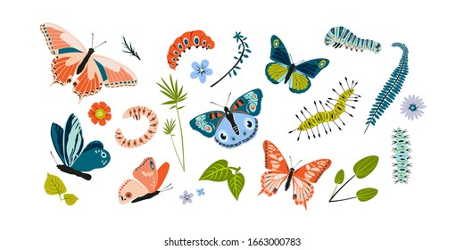 Set spring and summer colorful butterflies and caterpillar. Different cute silhouettes on white background. For festive card, logo, children, pattern, tattoo, decorative, concept. Vector illustration