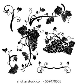 Set, a stencil,a bunch of grapes black white color logo wine map. Stock vector.