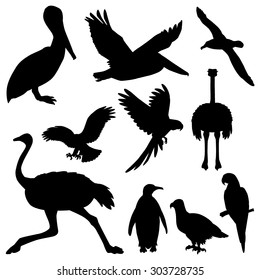 Set of the stickers with silhouettes of the birds.