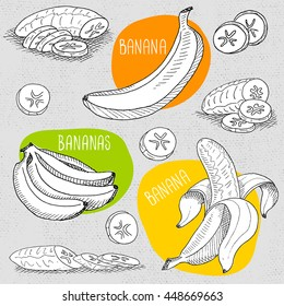 Set of stickers in sketch style, food and spices, old paper textured background. Fruit set with peeled banana, sliced banana, bunch of bananas. Hand drawn vector illustration.