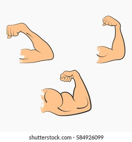 Set strong power muscle arms the stages of pumping biceps vector icon in color