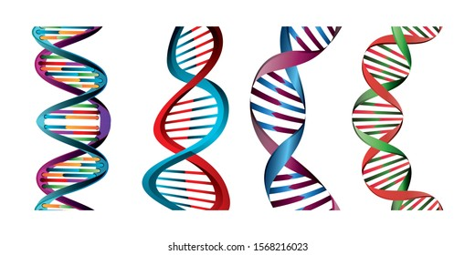 set of structures deoxyribonucleic acid vector illustration design