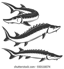 Set of sturgeon icons isolated on white background. Design elements for logo, label, emblem, sign, brand mark. Vector illustration.