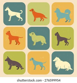 Set of stylized colored  icons of dog breeds .All objects are conveniently grouped
