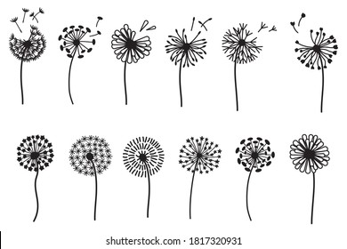 Set of stylized dandelions. Collection of plants with fluffy flying seeds. Field flower. Vinyl stickers on wall. Flower bud logo. Vector illustration of natural decorative elements.