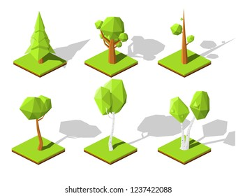 Set of summer trees (Birches and pines  trees)  for landscape design, map or game. Big and  small trees isometric vector illustration with shadows.