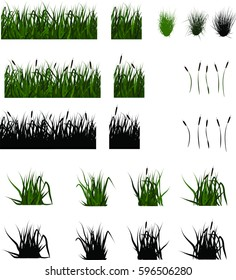 set of swamp grass and reeds, tussocks