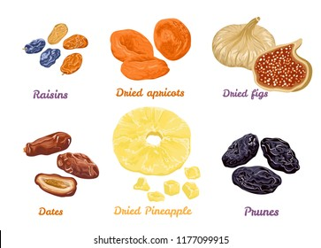 Set of sweet dry fruit snacks. Vector illustration in flat style. Icons collection isolated on white. Dried figs, apricots, pineapples, raisins, dates and prunes.