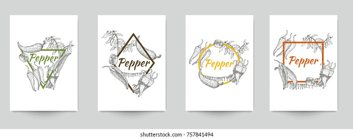 Set of template for branding, cover package, identity, banner, promote, card, label with chili peppers in retro vintage hand drawn, sketches, engraved style. Modern background. Vector illustration.