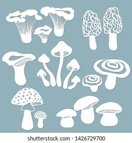 Set templates mushrooms for to cut with a laser from paper. White mushroom, the fly agaric, chanterelles, volnushki, mushrooms, morels. For decoration and design. Laser cut. Vector illustration. Patte