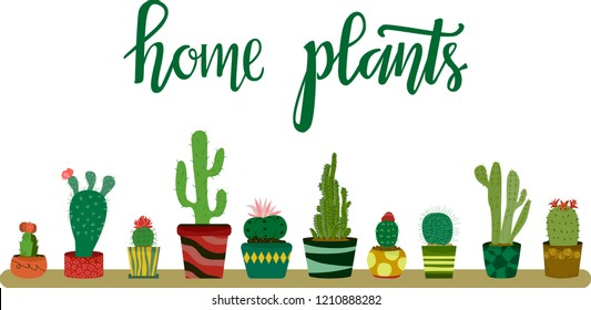 Set of ten  different cacti in colorful potssuch as red cap, beavertail, dwarf chin, saguaro, peyote,fairy castle, turk's cap, snow white, hedge and pencushion on white background with lettering