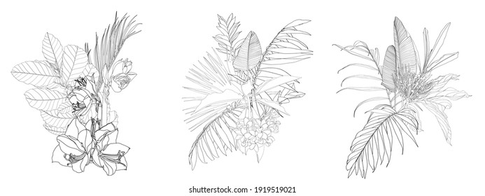 Set of three floral line bouquets with black and white hand drawn herbs, flowers and palm leaves insects in sketch style.