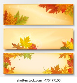 Set of three horizontal banners on the theme of the autumn leaf fall. Vector illustration.