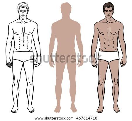 Set Of Three Male Body Design Templates Caucasian Model Man In Underwear Color Coloring