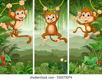 Set of three monkey with tropical forest background