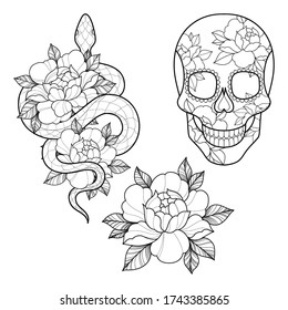 Set of three tattoo sketch with peony flowers, snake and skull  for Henna drawing and tattoo template. Flower tattoo. Vector illustration
