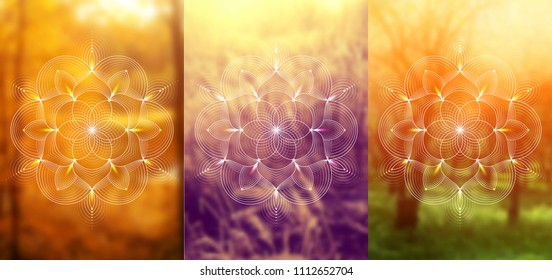 """Set of three template for card or poster, vertical format; Spiritual abstract sacred geometry on wonderful blurred background; """"Flower of life"""" and lotus; Yoga, meditation and relax."""