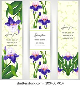 Set of three vertical banners. Iris flowers and dragonflies on backdrop.