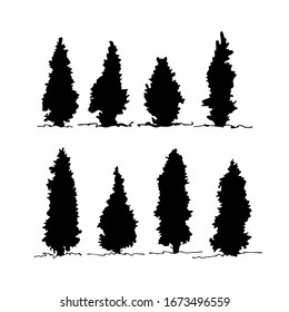 Set of thuja silhouette, Hand drawn architectural elements