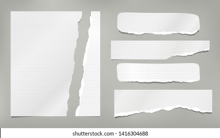 Set of torn paper strips, ripped lined notebook sheet are on grey background. Vector template illustration