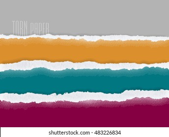 Set of torn paper, vector, graphic resources design template