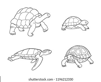 Set of tortoise and turtle in outlines - vector illustration. EPS8